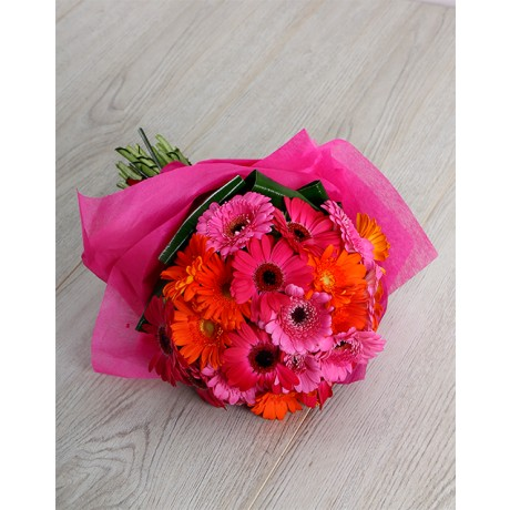 Mini Gerbera Bouquet for Mothers Day