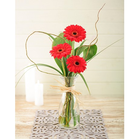 Red Gerberas in Speci Vase