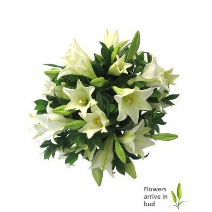 Sweet Surrender Bouquet Of White Lilies Inmotion Flowers