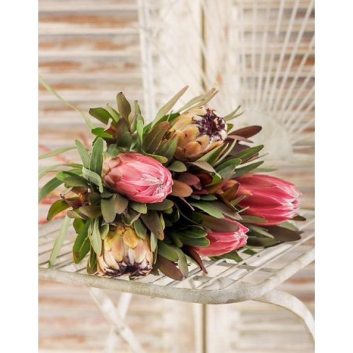 Wedding Flowers Pretoria: Proteas In Cellophane