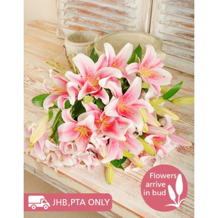 pink stargazer lily bouquet  inmotion flowers, Natural flower
