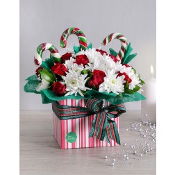 Christmas Flower Gift Box