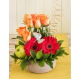 Rose & Gerbera Daisy Arrangement