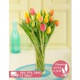 Mixed Tulips in a Glass Vase