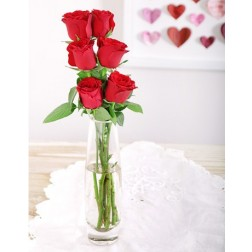 6 Red Roses in a Vase for Valentine's Day in Durban, South Africa