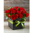 Red roses in a Black Gift Box
