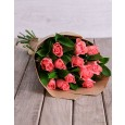 Pink Rose Womens Day Special