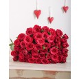 Red Roses in Cellophane for Valentine's Day in Durban, South Africa